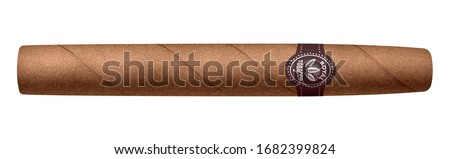 Realistic vector cigar isolated on white background. RGB. Global colors ストックフォト ©