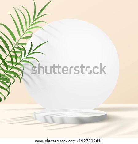 Realistic vector composition with geometrical shapes and palm leaves on a beige background. Minimalistic scene for advertising banners. Trendy branding mockup.