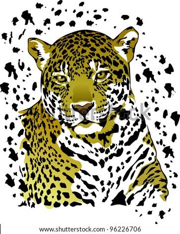 realistic vector drawing jaguar