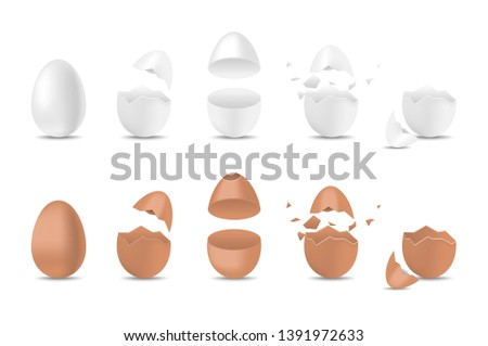 c09b59bb6274 Realistic vector eggs set. Broken, exploded eggshell, two halves and whole  chicken egg