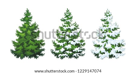 Realistic vector illustration of fir tree in snow on white background. Green fluffy pine, isolated on white background 1.2