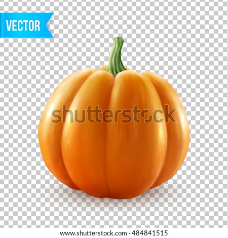 Realistic vector pumpkin isolated on transparency grid background
