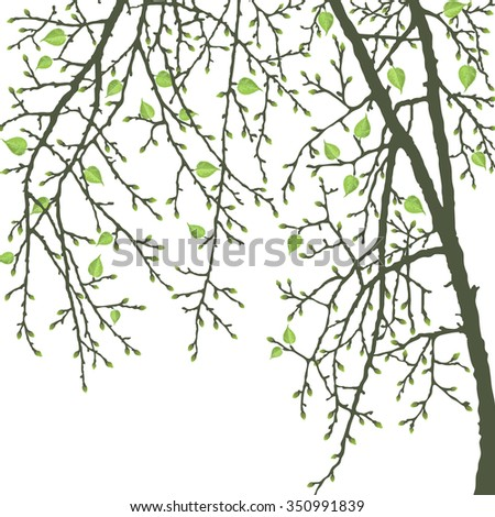 realistic vector spring tree