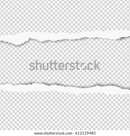 Realistic vector torn paper with space for your design.