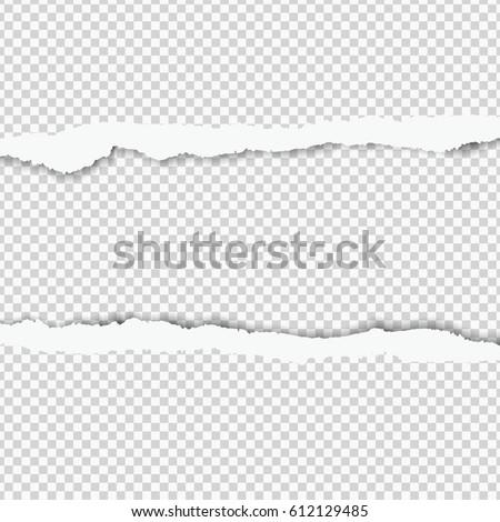 realistic vector torn paper