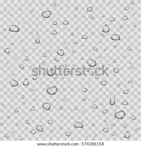 realistic vector water drops