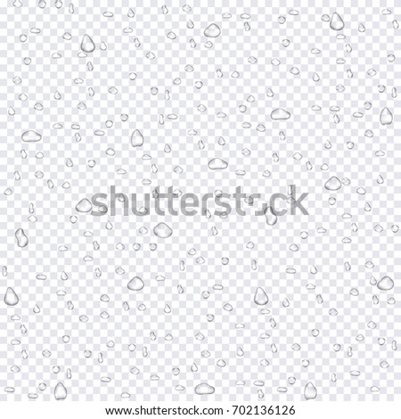 Realistic water rain drops on transparent background. Clean drop condensation. Vector pure bubbles on window glass
