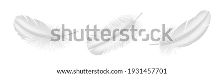 Realistic white feather set closeup isolated on white background. Detailed fluffy bird plume in 3d style. Vector illustration