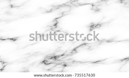 Realistic White Marble Vector Texture. Light Gray Stone Surface with Black Veins. Rectangular Tile in HD Format. Elegant Background.