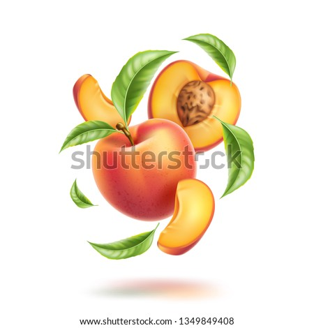 Realistic whole peach, half and slices with leaves in swirl motion. Juicy fruits for natural product vector design. Cut ripe nectarine with stone for healthy organic drink package design.