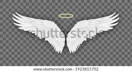 Realistic wings. Pairs of wings in motion 3d mockup. Vector illustration EPS10