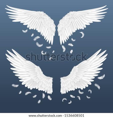 Realistic wings. White isolated pair of angel wings with falling feathers, 3D bird wings design. Vector illustration template style abstract feathers as concept of arrival of winter