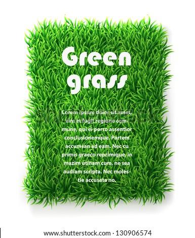 Rectangle green grass banner. vector background