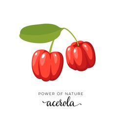Red acerola berry flat icon with inscription colorful vector illustration of eco food isolated on white.
