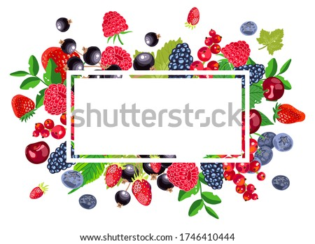 red and black berry and fruit