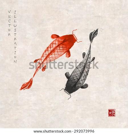 red and black koi carps hand