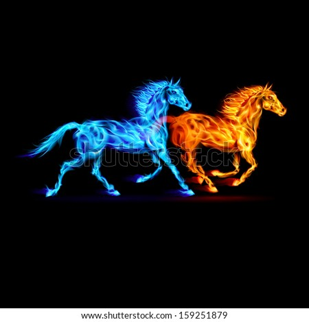 red and blue fire horses on