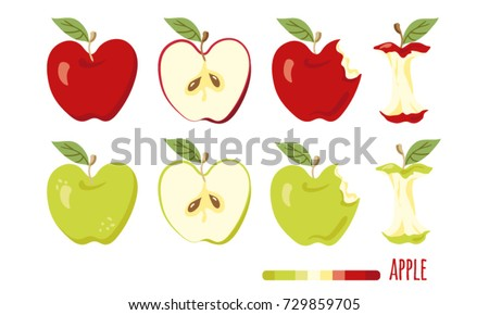 Red and green apple set. Half apple, bitten apple, apple stump icons.