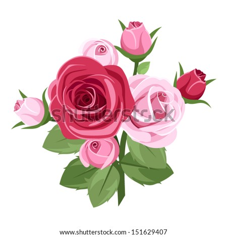 red and pink roses vector