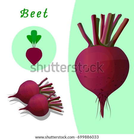 Red beet on the basis of contrasting, icon beet