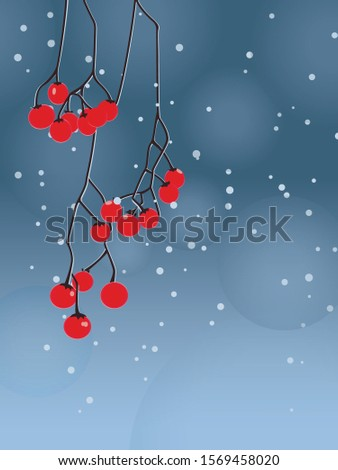 red berries on a branch in