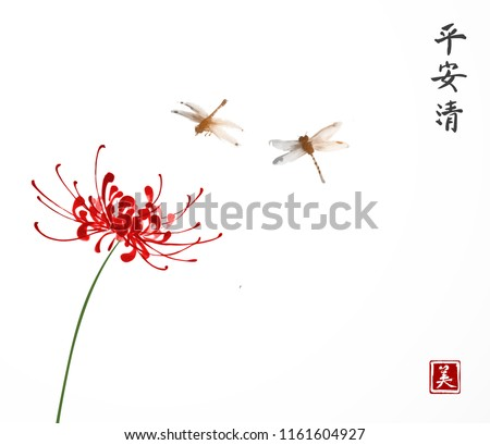 red chrysanthemum and two