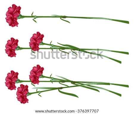 red clove bouquet of