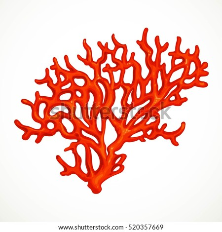 red corals sea life object