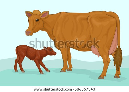 red cow with calf
