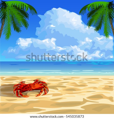 red crab on the seashore