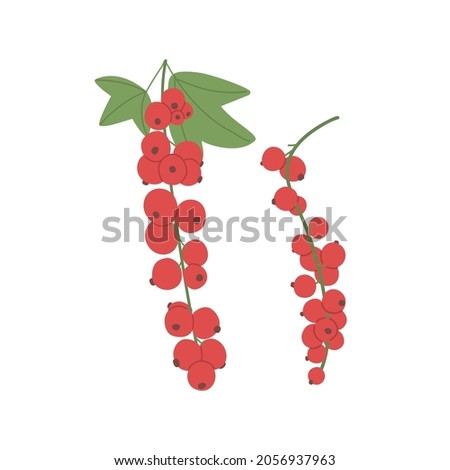 red currant with leaf growing