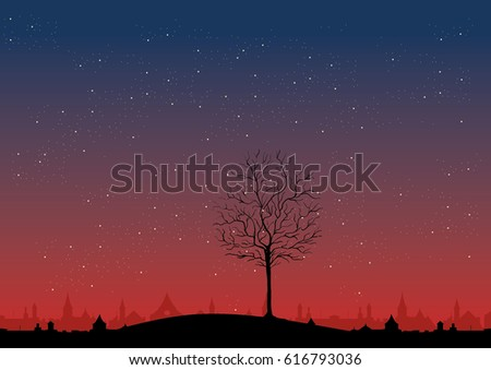 red dawn  night sky and stars