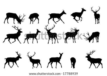 red deer silhouettevector collection