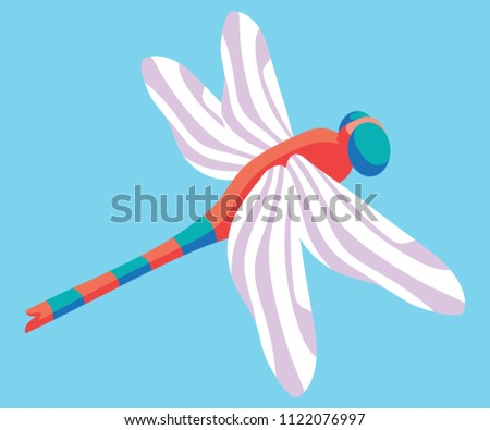 red dragonfly with blue stripes
