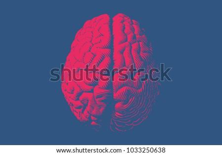red engraving brain...