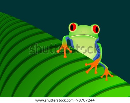 red eyed tree frog sitting on