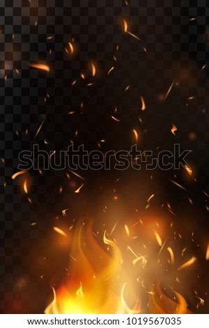 Stock Photo Red Fire sparks vector flying up. Burning glowing particles. Flame of fire with sparks in the air over a dark night. Firestorm texture. Isolated on a black transparent background.