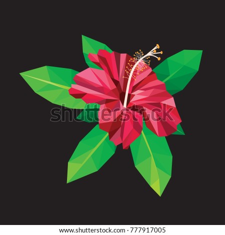Red hibiscus blooming isolated on black low polygon design.  Top view small flora plant geometric graphic.  Purple floral green fresh leaf branches.  Pink flower polygonal crystal style illustration.