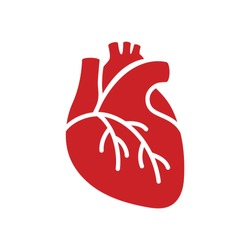 Red icon of human heart in flat style isolated over white background. Vector illustration