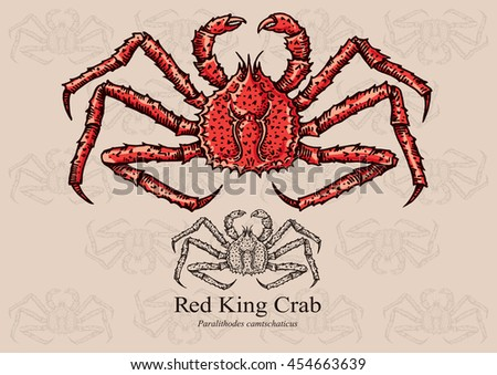 Red King Crab. Vector illustration with precise details and optimized stroke that allows the image to be used in small sizes (in packaging design, decoration, educational graphics, etc.)