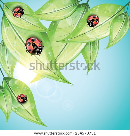 red ladybugs on the green