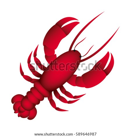 red lobster icon image, vector illustraction design
