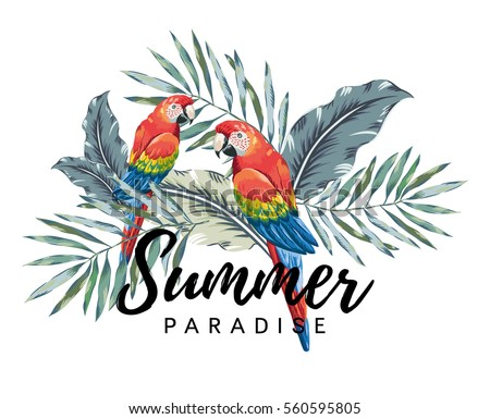 red macaw parrots with palm