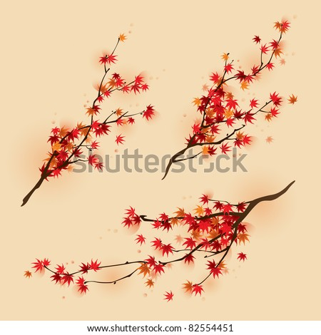 red maple branches in autumn