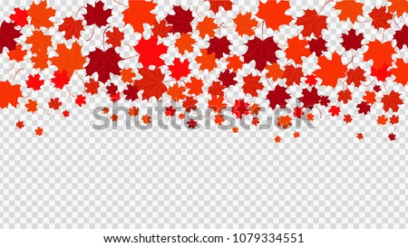 Red maple leaves transparent background. Symbol of Canada. Autumn background. Vector illustration