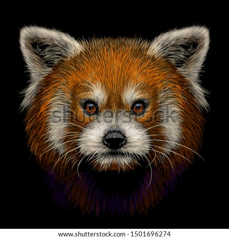 red panda graphic  color  hand