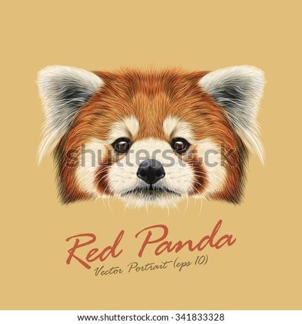 red panda rare animal cute face