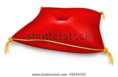 red pillow  mesh