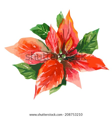 Red Poinsettia Bethlehem Star