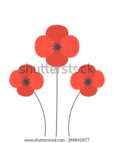 red poppies flowers vector